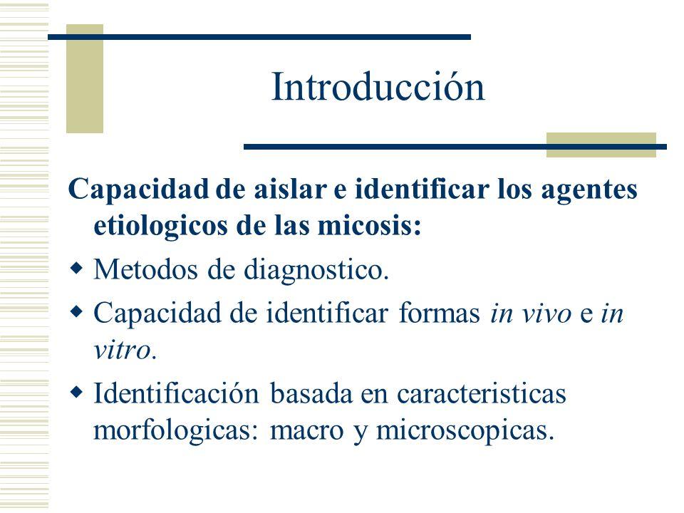 Introducción Capacidad de aislar e identificar los agentes etiologicos de las micosis: Metodos de diagnostico.