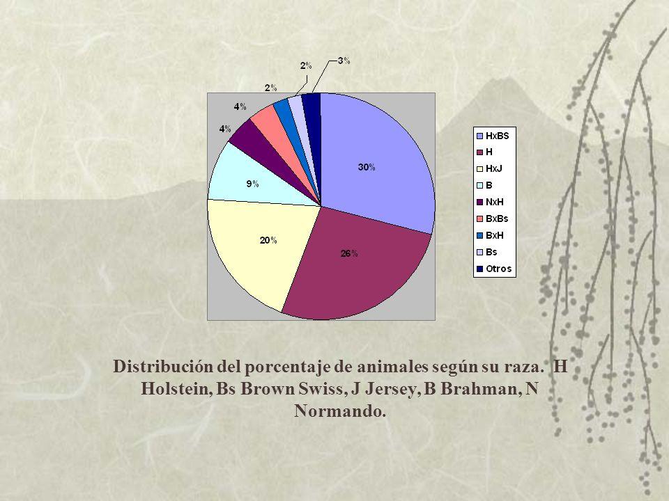 Distribución del porcentaje de animales según su raza