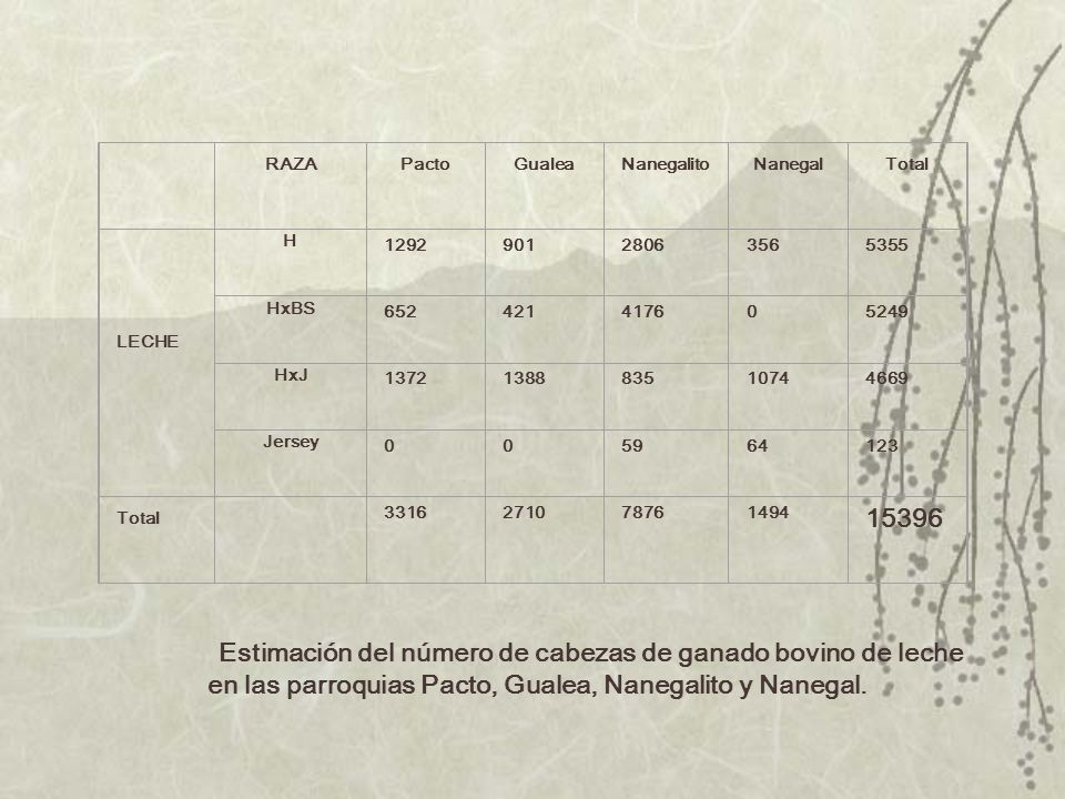 RAZA. Pacto. Gualea. Nanegalito. Nanegal. Total. LECHE. H. 1292. 901. 2806. 356. 5355. HxBS. 652. 421.