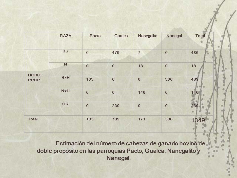 RAZA. Pacto. Gualea. Nanegalito. Nanegal. Total. DOBLE. PROP. BS. 479. 7. 486. N. 18. BxH. 133. 336.