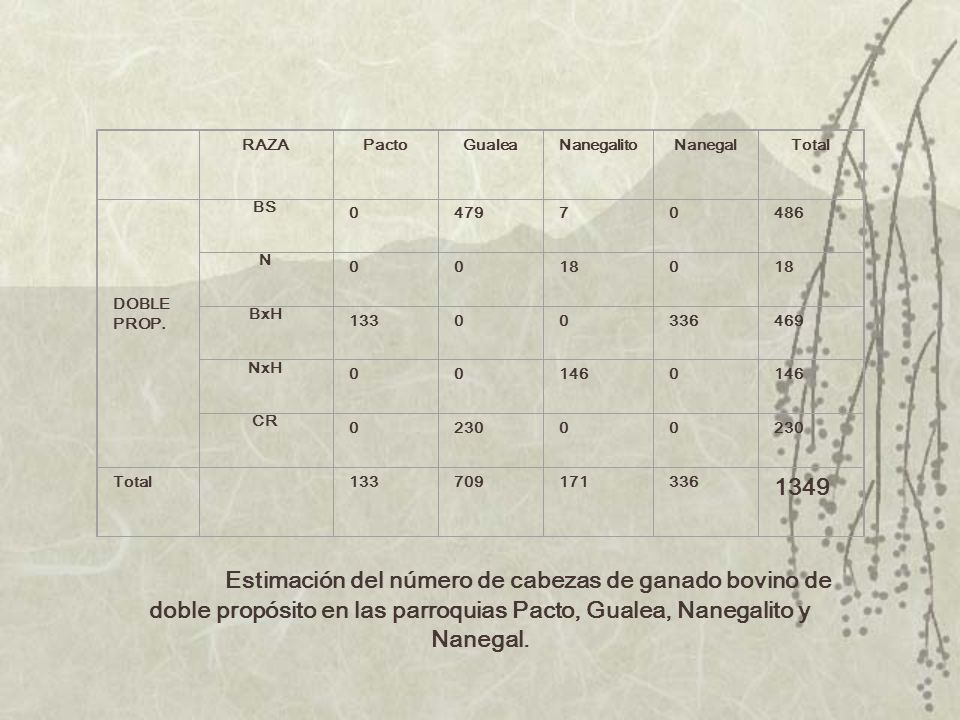 RAZA. Pacto. Gualea. Nanegalito. Nanegal. Total. DOBLE. PROP. BS. 479. 7. 486. N. 18.