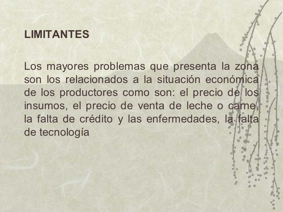 LIMITANTES