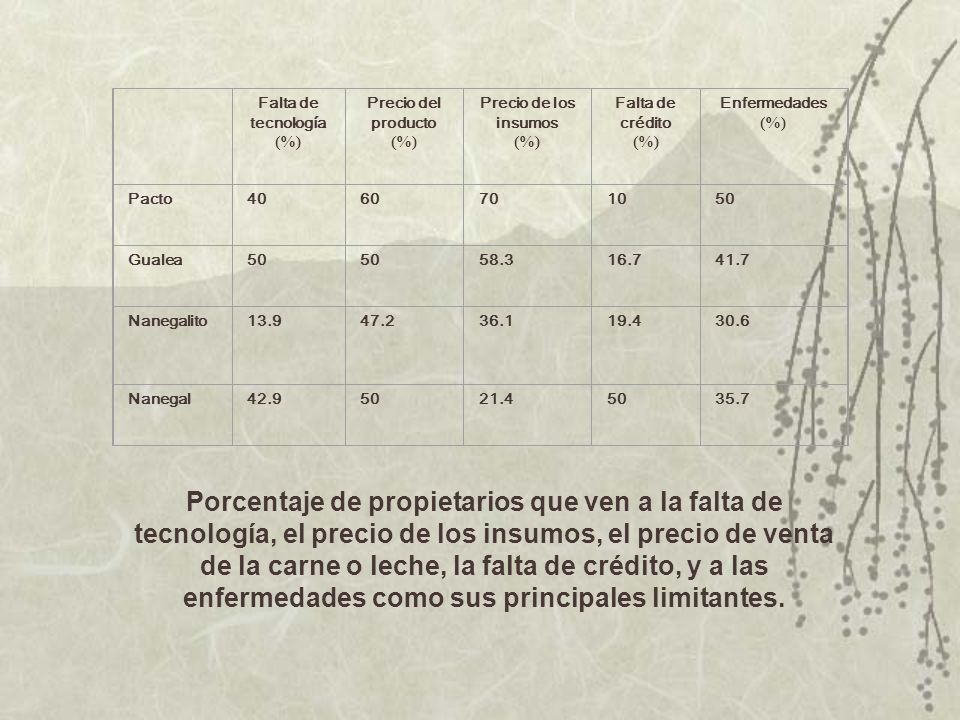 Falta de tecnología. (%) Precio del producto. Precio de los insumos. Falta de crédito. Enfermedades.