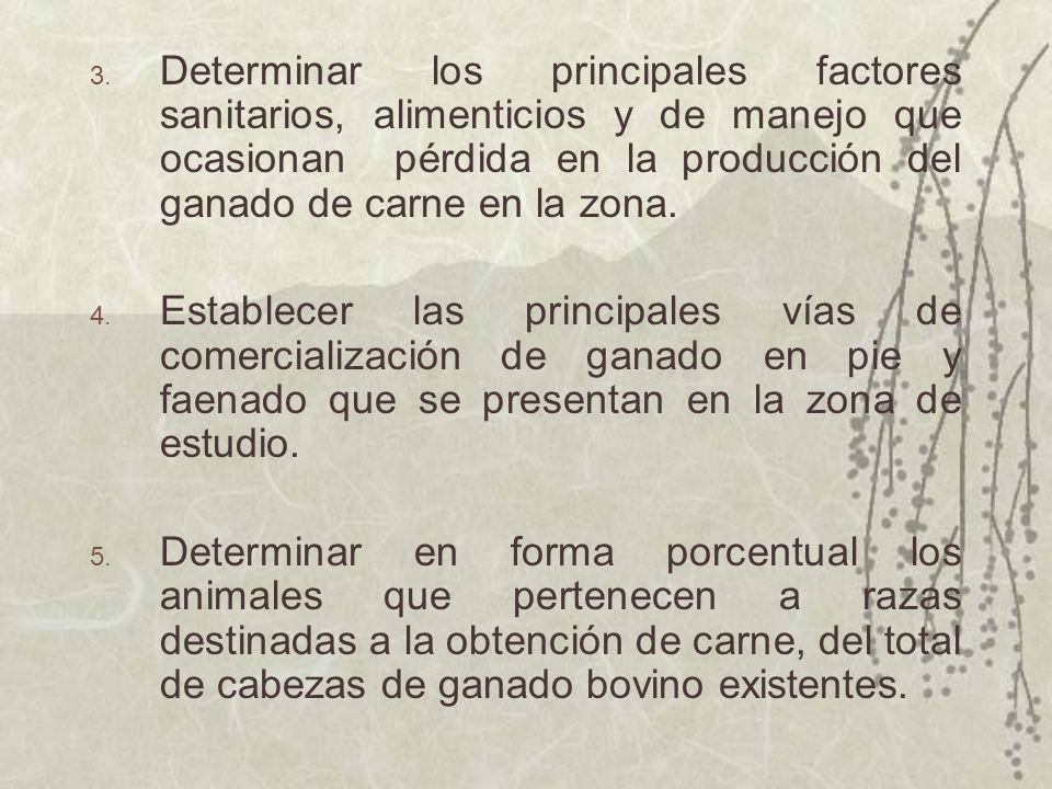 Determinar los principales factores sanitarios, alimenticios y de manejo que ocasionan pérdida en la producción del ganado de carne en la zona.