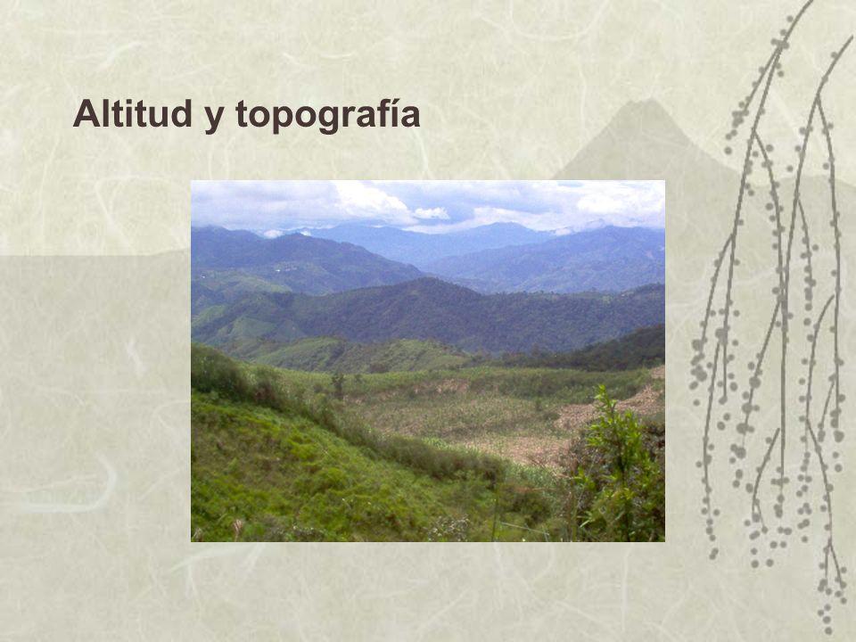 Altitud y topografía