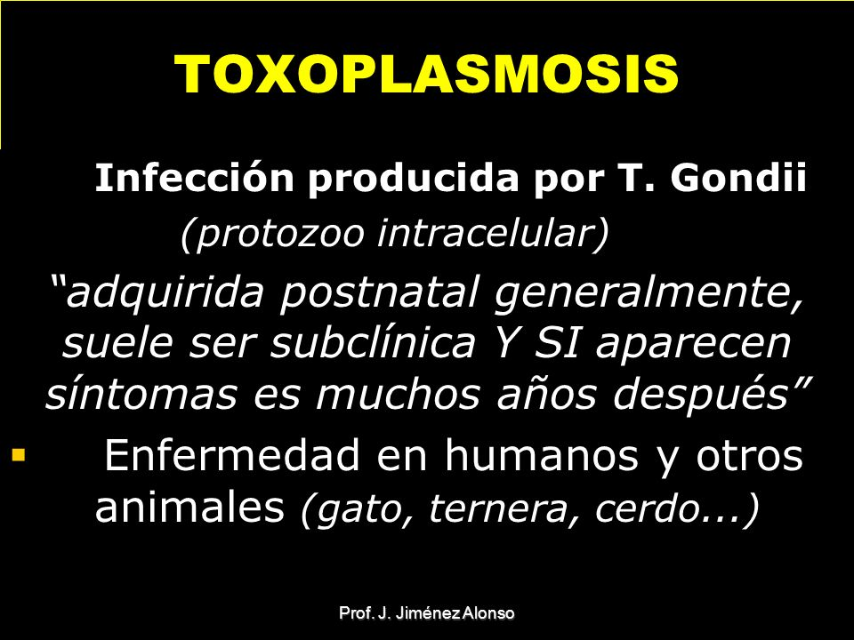 TOXOPLASMOSIS Infección producida por T. Gondii. (protozoo intracelular)