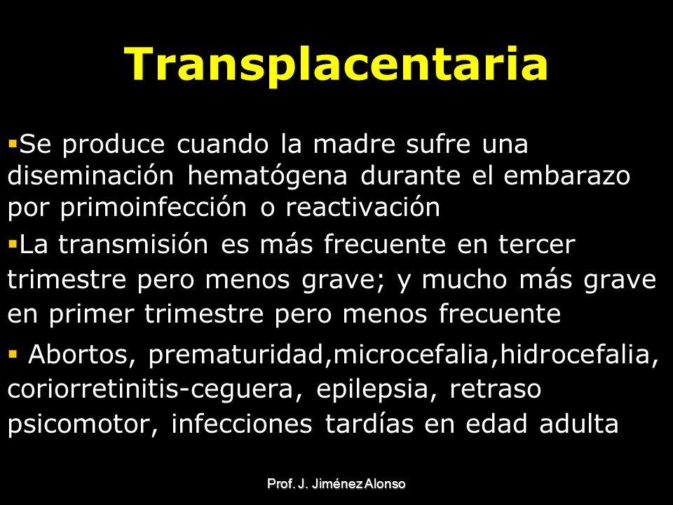 Transplacentaria Se produce cuando la madre sufre una diseminación hematógena durante el embarazo por primoinfección o reactivación.