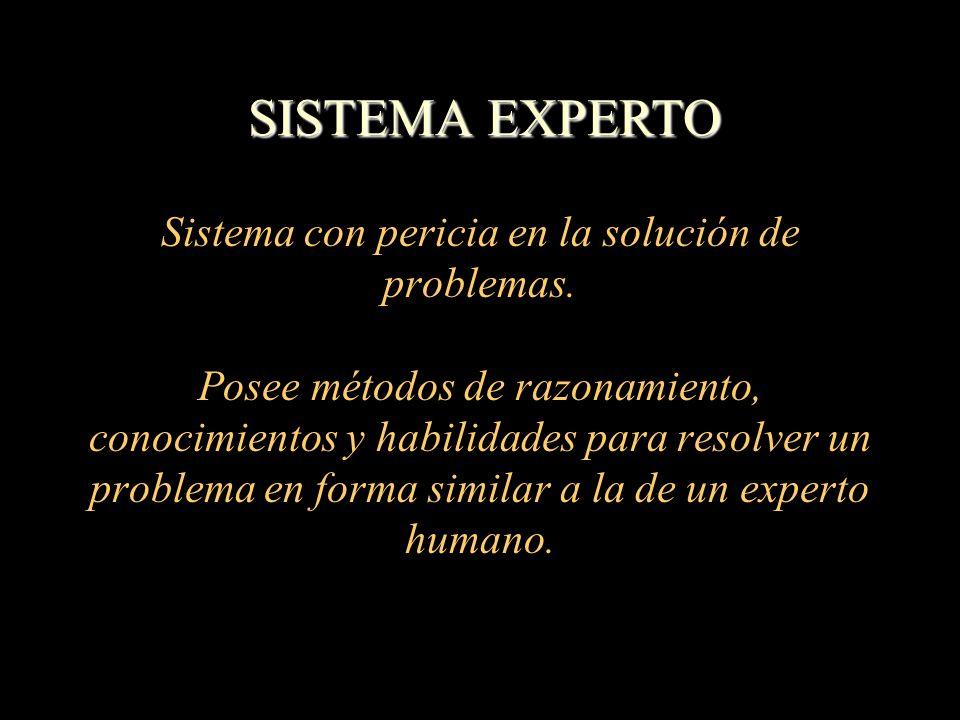 SISTEMA EXPERTO