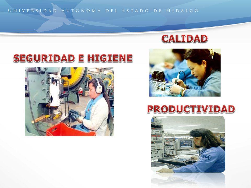 CALIDAD SEGURIDAD E HIGIENE PRODUCTIVIDAD