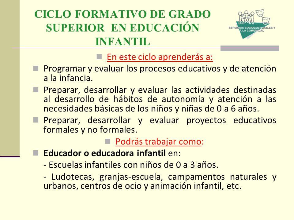 Oferta formativa durante el curso 2013 ppt descargar for Grado superior de jardin de infancia