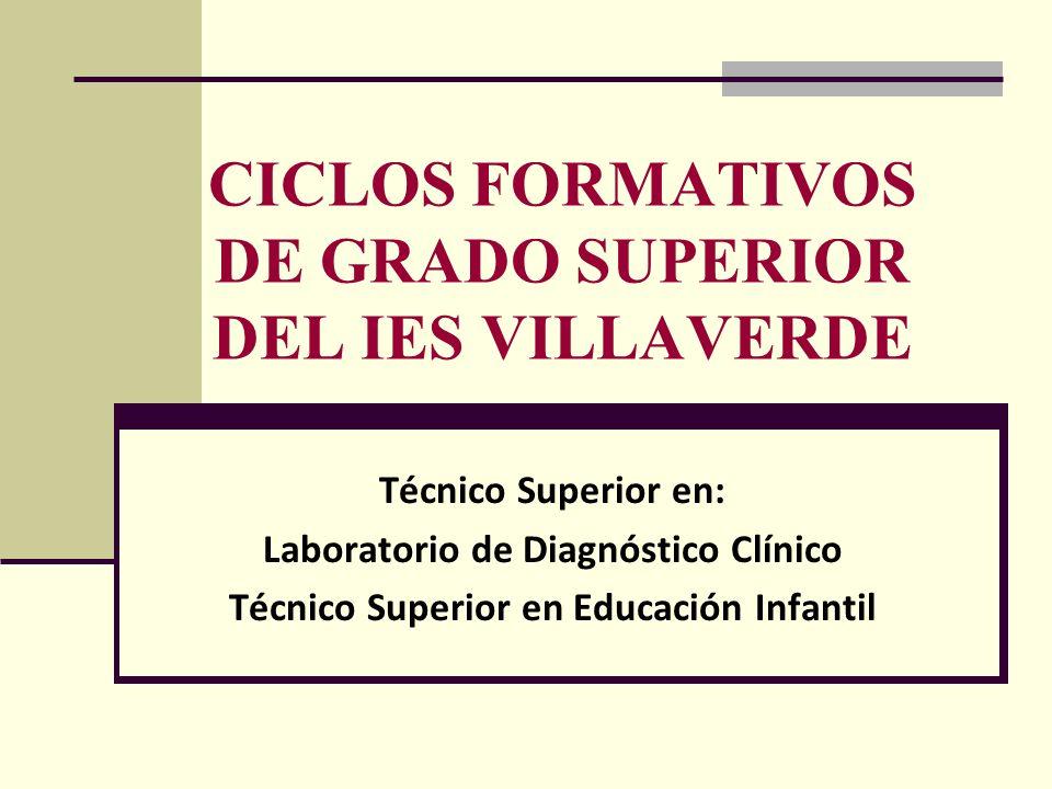CICLOS FORMATIVOS DE GRADO SUPERIOR DEL IES VILLAVERDE