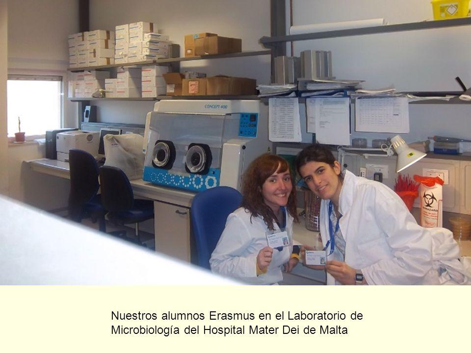 Nuestros alumnos Erasmus en el Laboratorio de Microbiología del Hospital Mater Dei de Malta