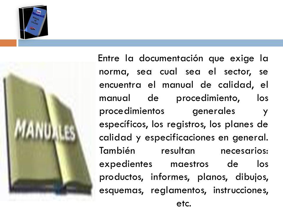 Entre la documentación que exige la norma, sea cual sea el sector, se encuentra el manual de calidad, el manual de procedimiento, los procedimientos generales y específicos, los registros, los planes de calidad y especificaciones en general.