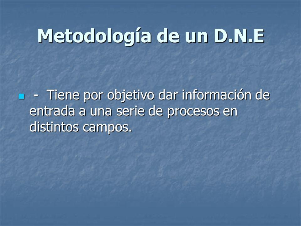 Metodología de un D.N.E - Tiene por objetivo dar información de entrada a una serie de procesos en distintos campos.