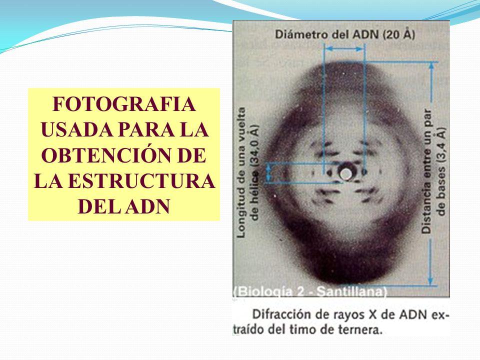 USADA PARA LA OBTENCIÓN DE LA ESTRUCTURA DEL ADN