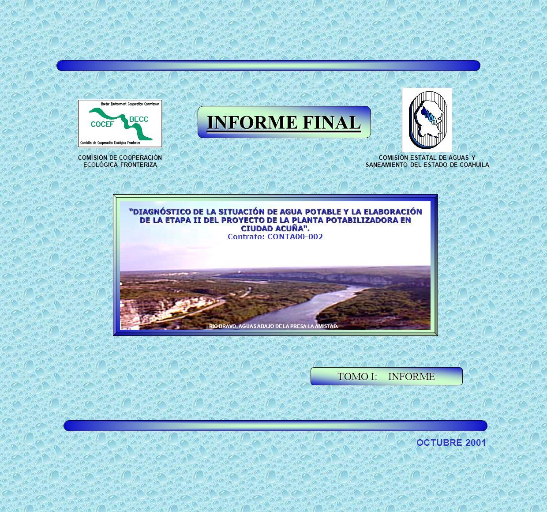 INFORME FINAL TOMO I: INFORME OCTUBRE 2001