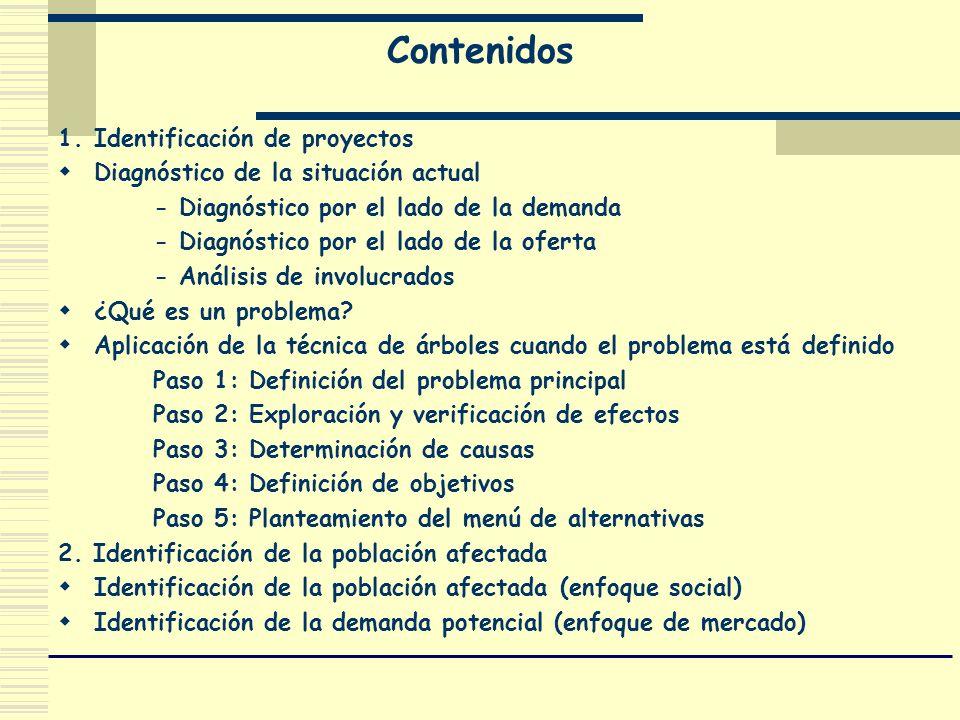 Contenidos 1. Identificación de proyectos