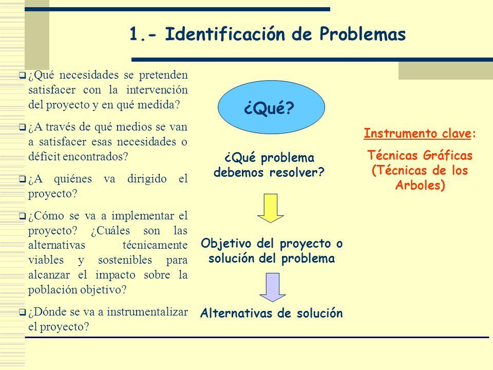 1.- Identificación de Problemas