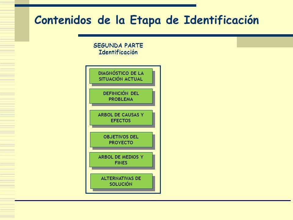 Contenidos de la Etapa de Identificación