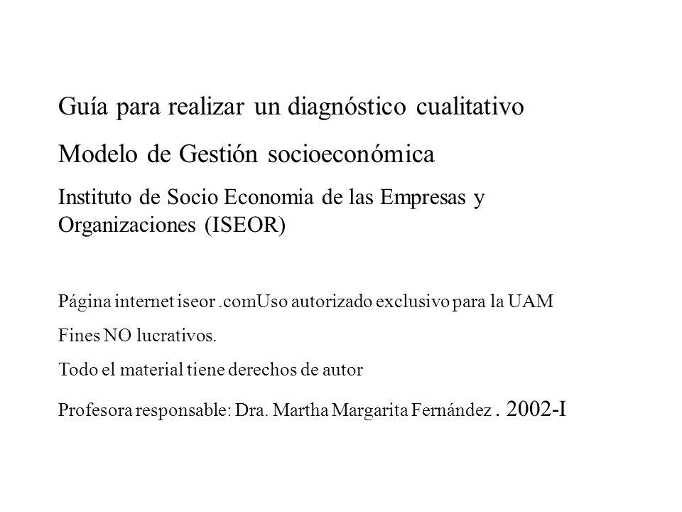 Guía para realizar un diagnóstico cualitativo