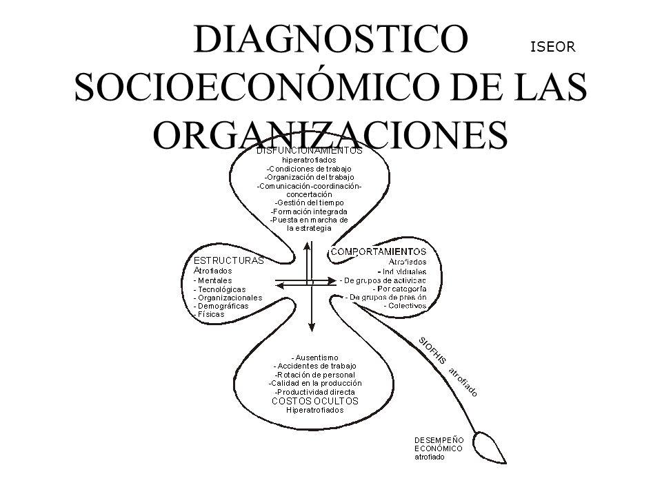 DIAGNOSTICO SOCIOECONÓMICO DE LAS ORGANIZACIONES