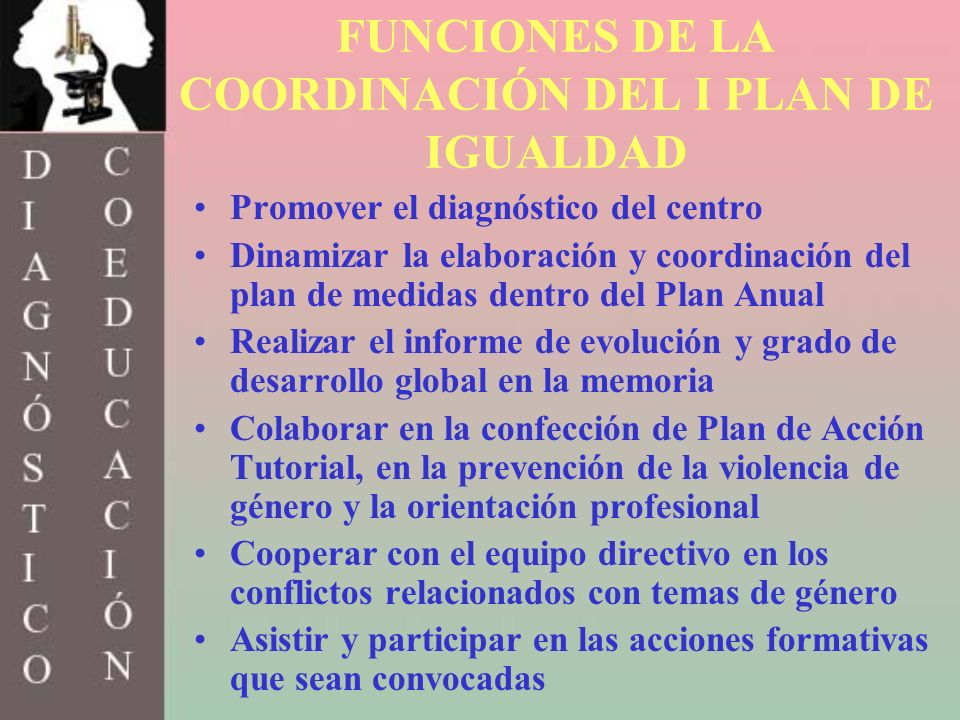 FUNCIONES DE LA COORDINACIÓN DEL I PLAN DE IGUALDAD