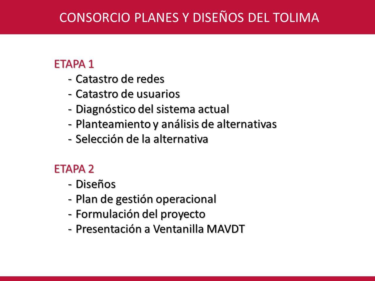 CONSORCIO PLANES Y DISEÑOS DEL TOLIMA