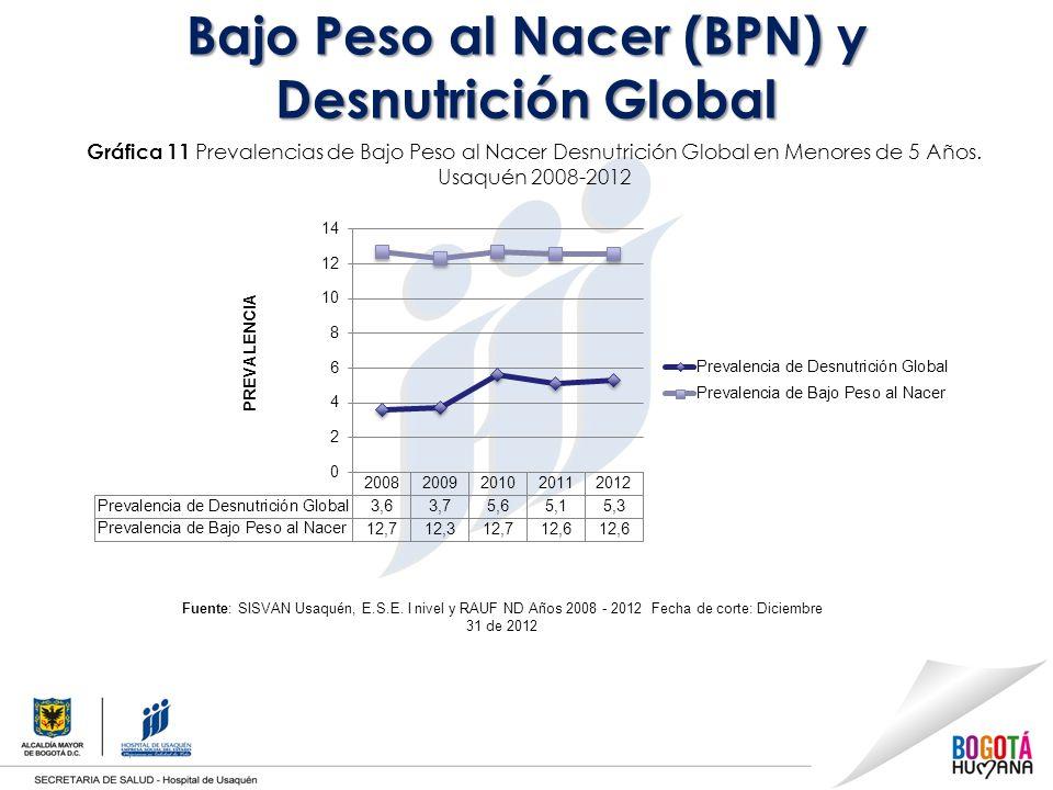 Bajo Peso al Nacer (BPN) y Desnutrición Global