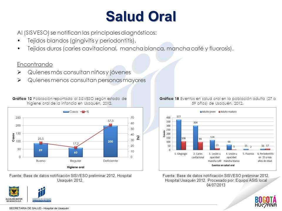 Salud Oral Al (SISVESO) se notifican las principales diagnósticos: