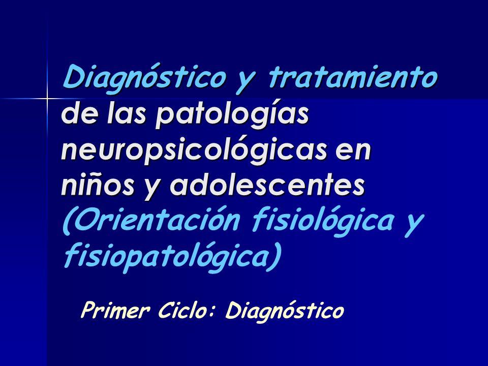 Primer Ciclo: Diagnóstico