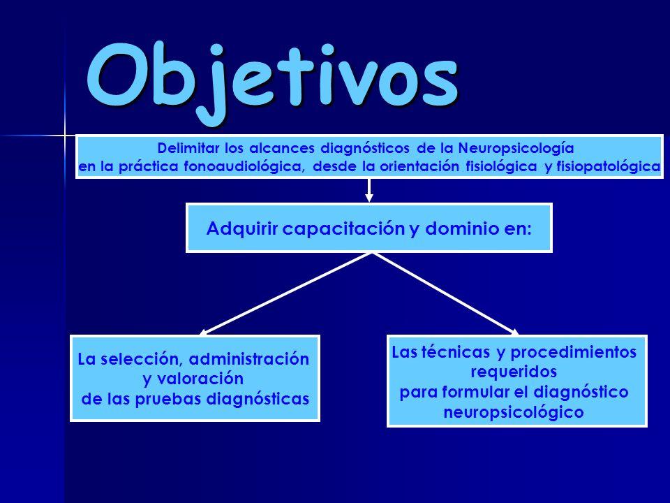 Objetivos Adquirir capacitación y dominio en: