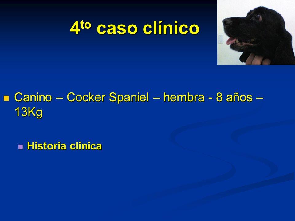4to caso clínico Canino – Cocker Spaniel – hembra - 8 años – 13Kg