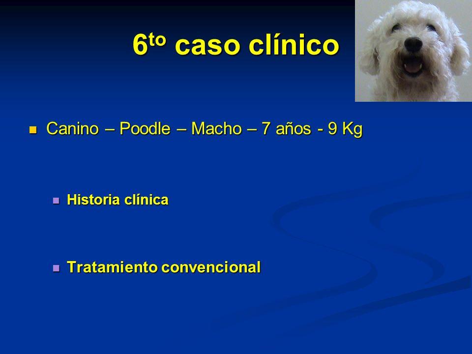 6to caso clínico Canino – Poodle – Macho – 7 años - 9 Kg