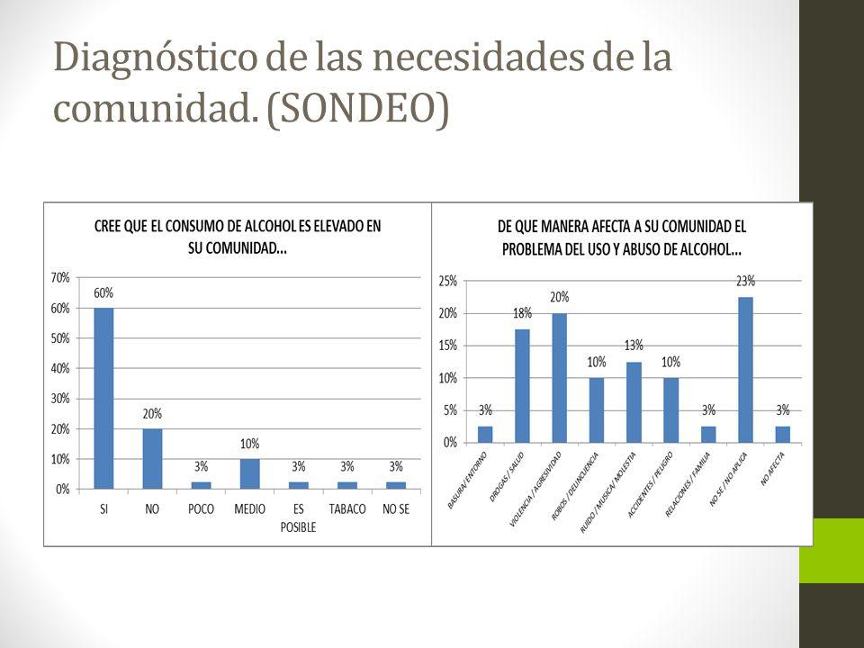 Diagnóstico de las necesidades de la comunidad. (SONDEO)