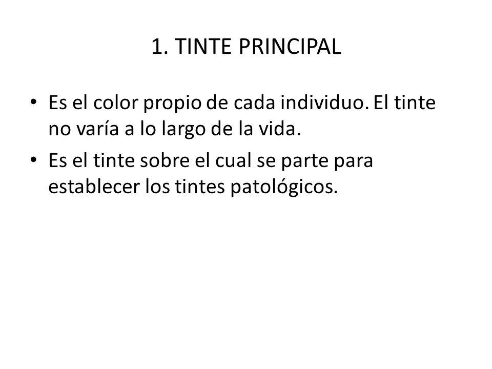 1. TINTE PRINCIPAL Es el color propio de cada individuo. El tinte no varía a lo largo de la vida.