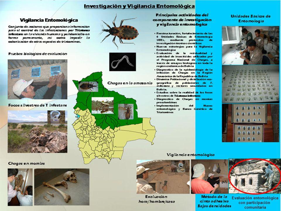 Evaluación entomológica