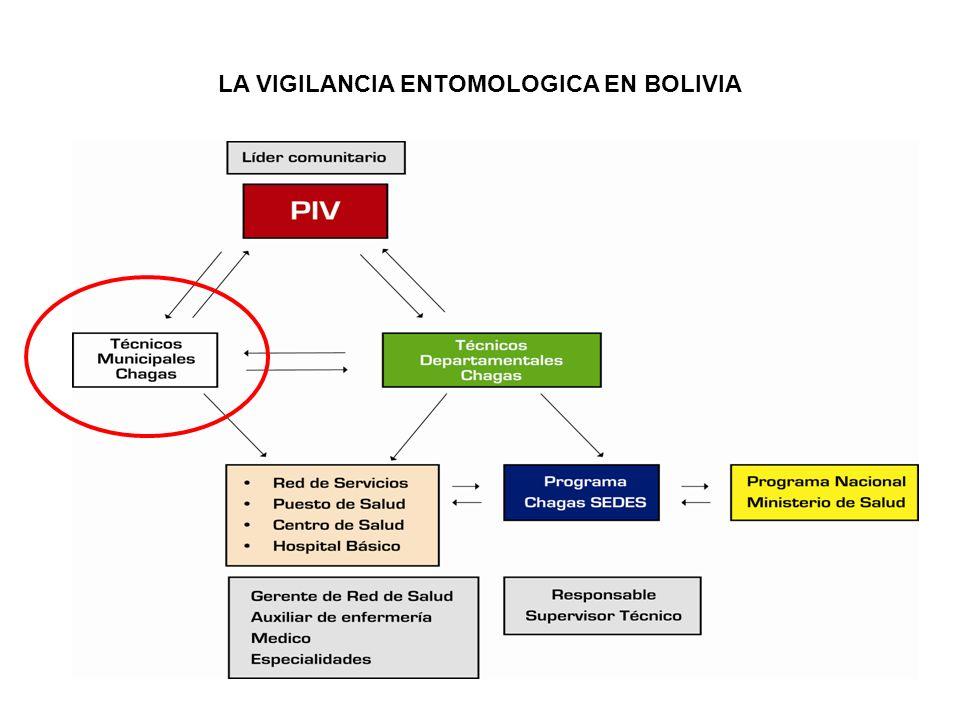 LA VIGILANCIA ENTOMOLOGICA EN BOLIVIA