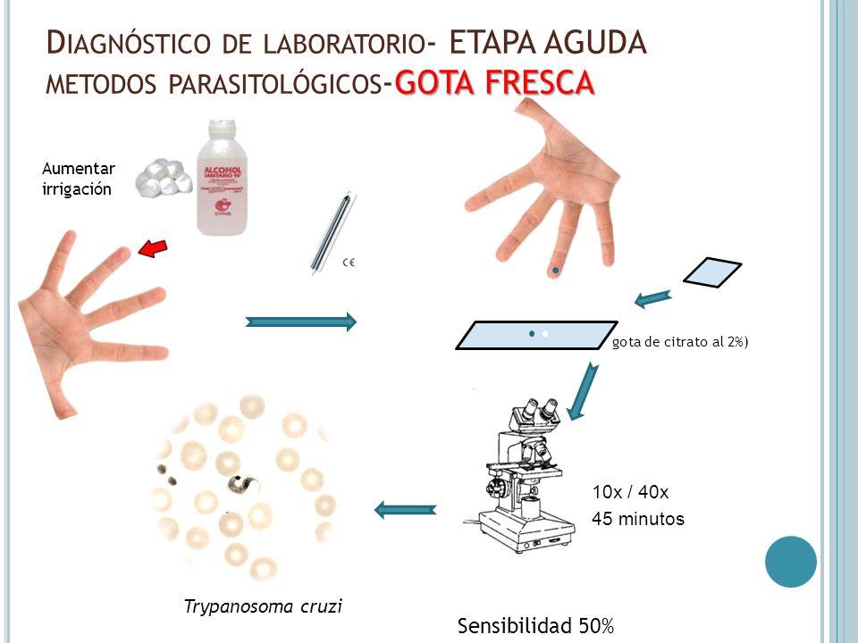 Diagnóstico de laboratorio- ETAPA AGUDA metodos parasitológicos-GOTA FRESCA