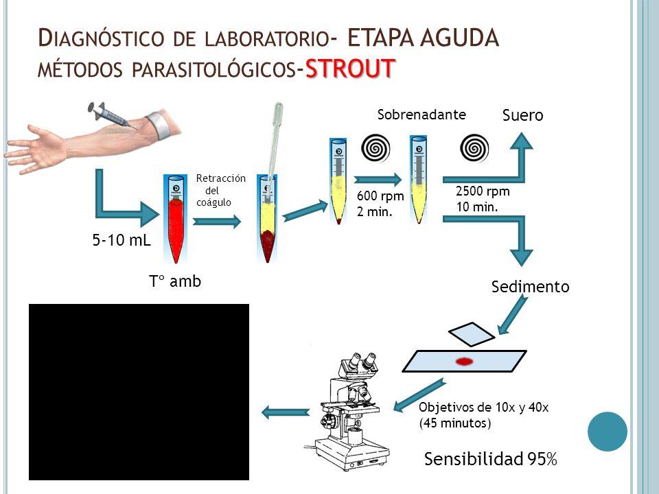 Diagnóstico de laboratorio- ETAPA AGUDA métodos parasitológicos-STROUT