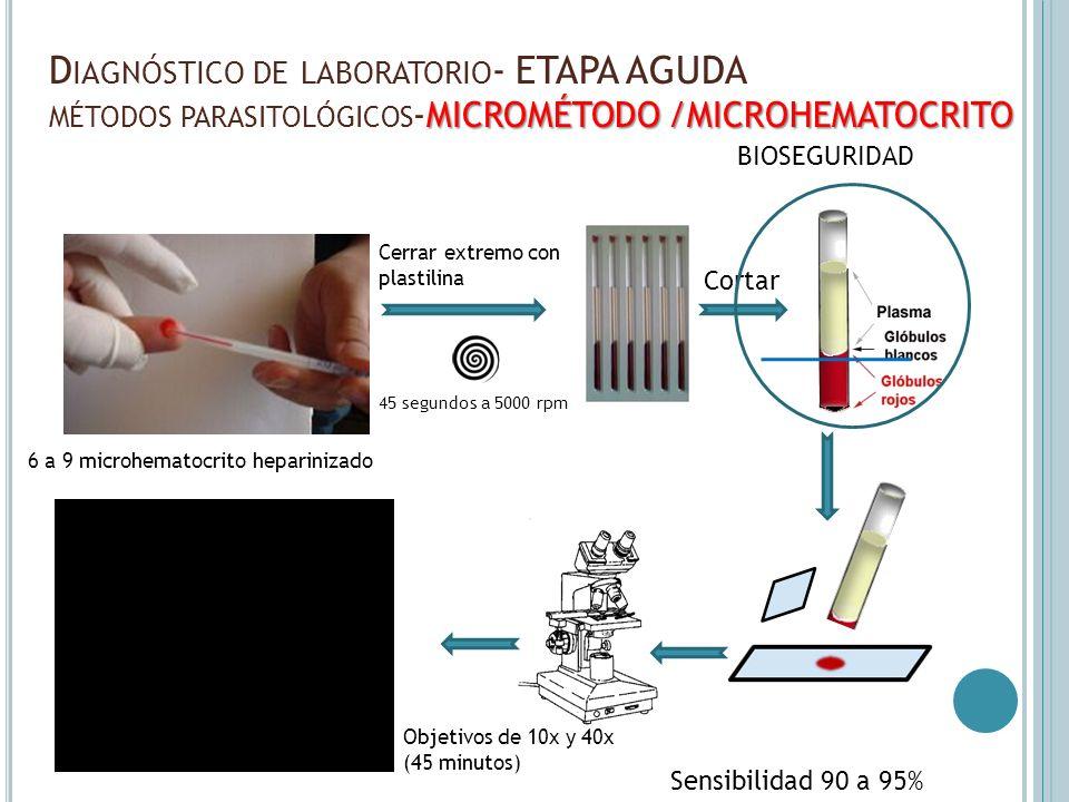 Diagnóstico de laboratorio- ETAPA AGUDA métodos parasitológicos-MICROMÉTODO /MICROHEMATOCRITO