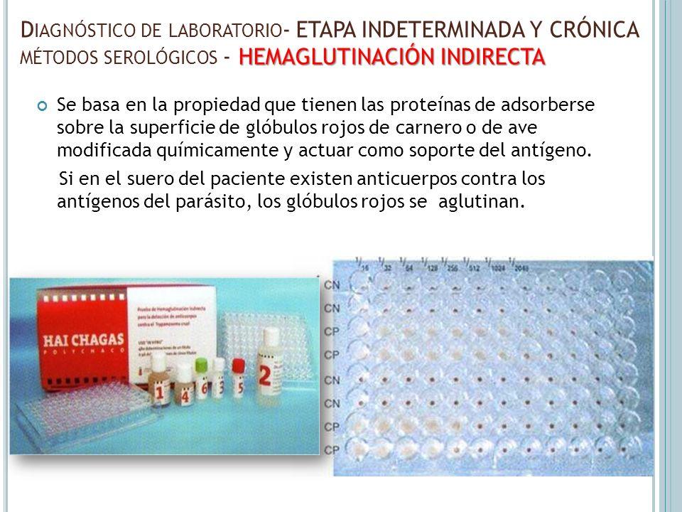 Diagnóstico de laboratorio- ETAPA INDETERMINADA Y CRÓNICA métodos serológicos - HEMAGLUTINACIÓN INDIRECTA