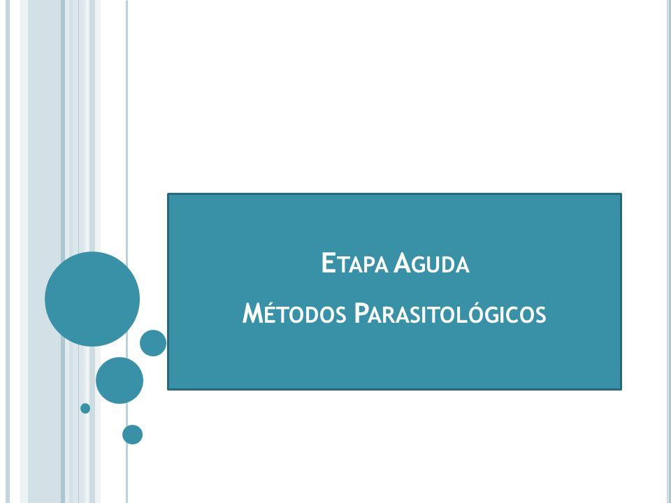 Etapa Aguda Métodos Parasitológicos
