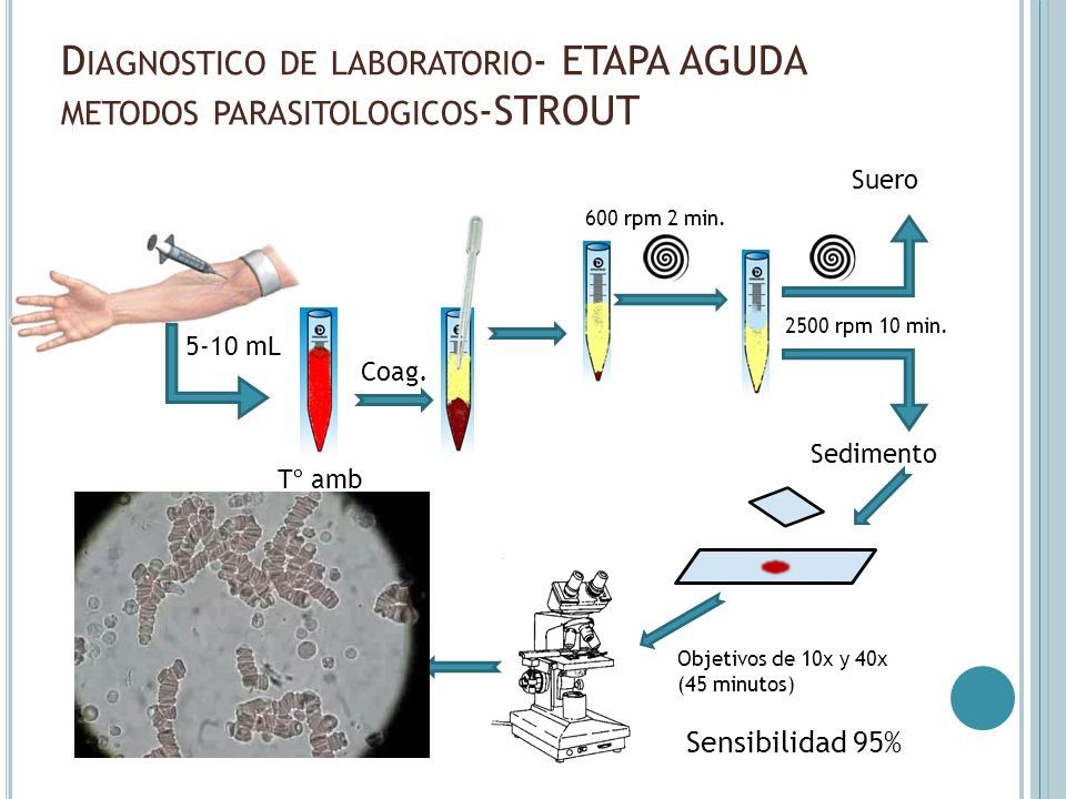 Diagnostico de laboratorio- ETAPA AGUDA metodos parasitologicos-STROUT