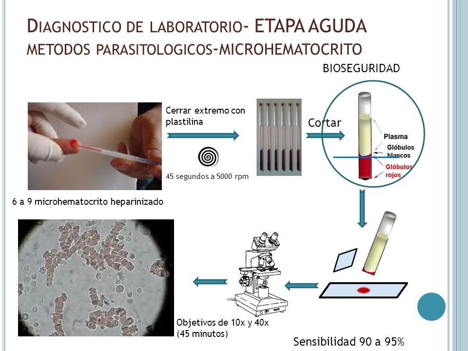 Diagnostico de laboratorio- ETAPA AGUDA metodos parasitologicos-MICROHEMATOCRITO