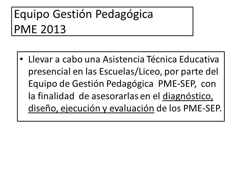 Equipo Gestión Pedagógica PME 2013
