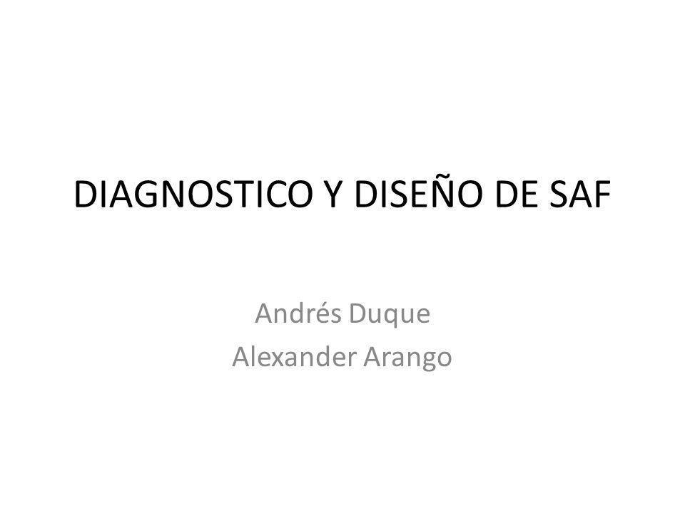 DIAGNOSTICO Y DISEÑO DE SAF