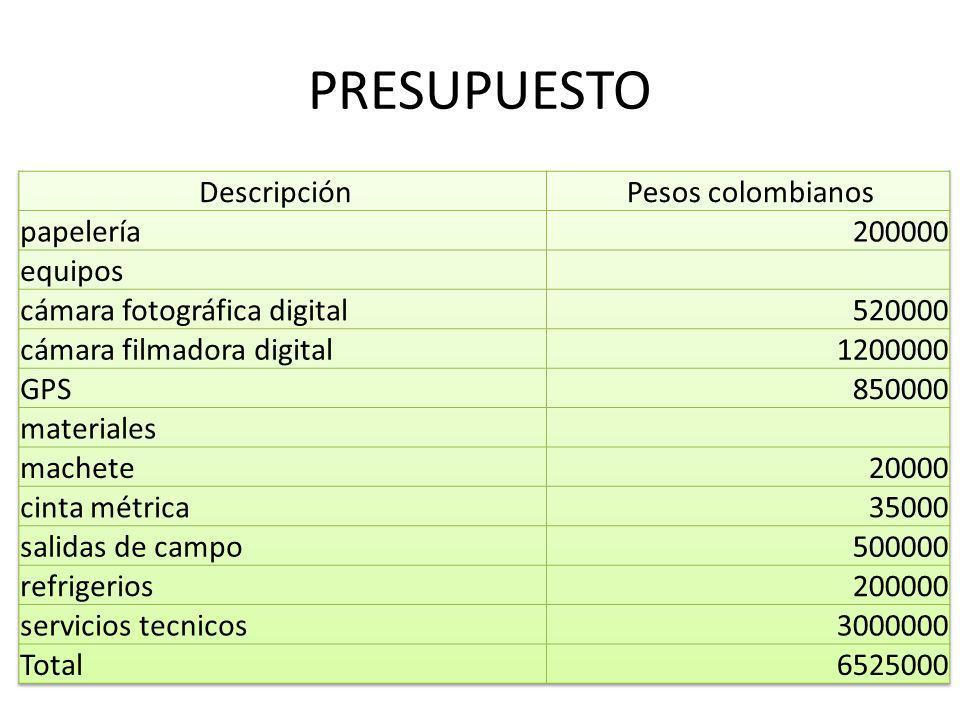 PRESUPUESTO Descripción Pesos colombianos papelería 200000 equipos