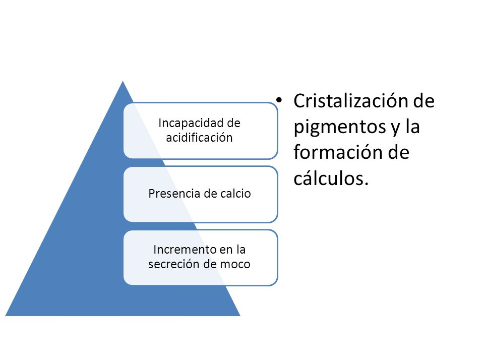 Cristalización de pigmentos y la formación de cálculos.