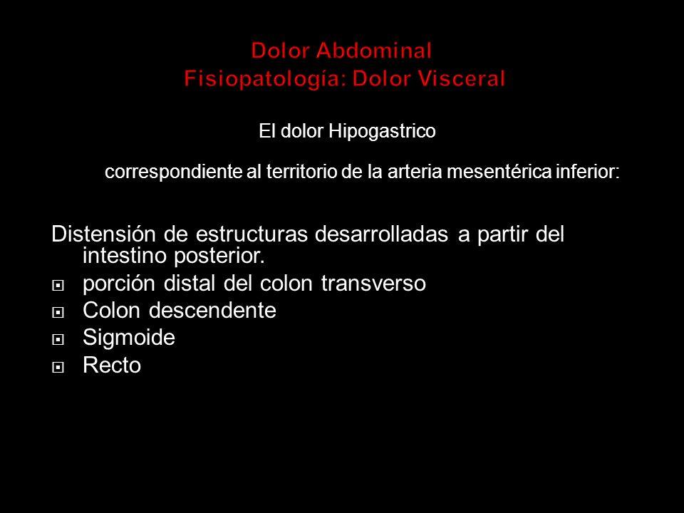 Dolor Abdominal Fisiopatología: Dolor Visceral