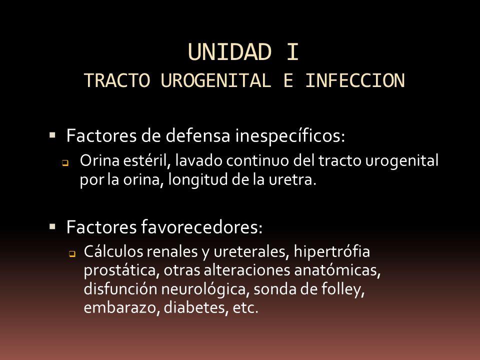 UNIDAD I TRACTO UROGENITAL E INFECCION
